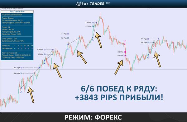 Самый надежный брокер в России - РобоФорекс: центовые счета для новичков