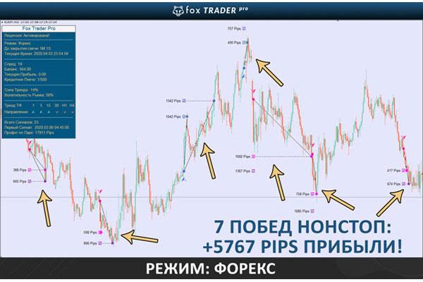 Fox-Trader-Pro---примеры-сигналов